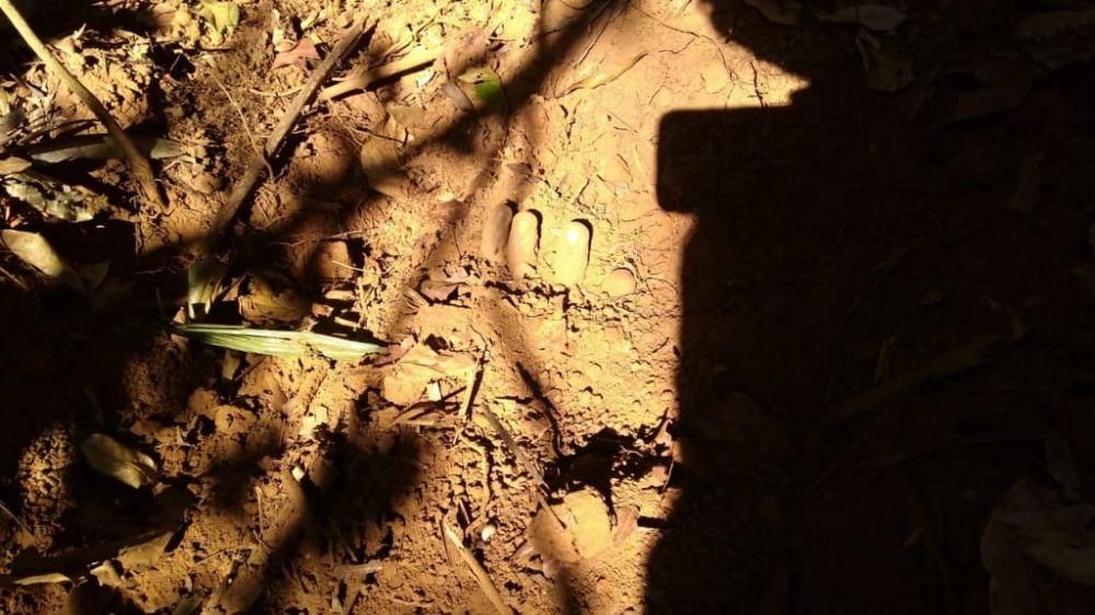 Local onde o corpo do jovem foi encontrado – Foto: Reprodução / Agência Tocantins
