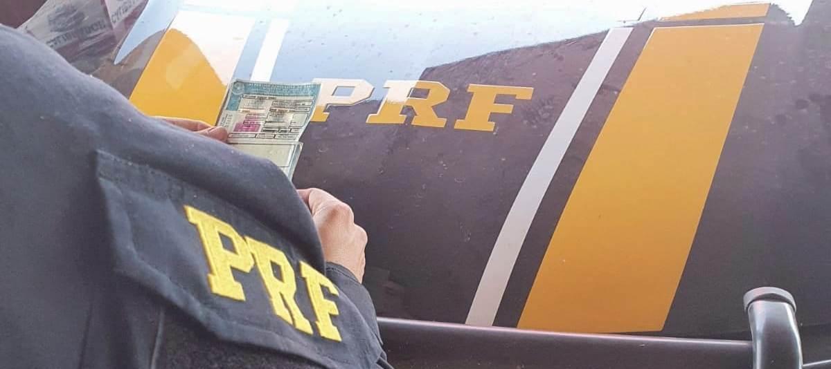 Carteira Nacional de Habilitação falsificada apresentada pelo motorista Durante a fiscalização da polícia – Foto: Divulgação / PRF